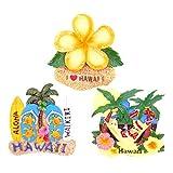 (アンドラキ) AndLaki ハワイ お土産 マグネット 冷蔵庫 ハワイアン 雑貨 厳選3個セット