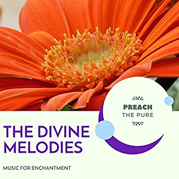 The Divine Melodies - Music For Enchantment