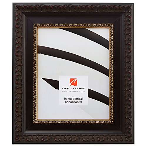 Craig Frames 9530 16 by 20-Inch Picture Frame, Ornate Finish, 2.5-Inch Wide, Brushed Mahogany with Gold