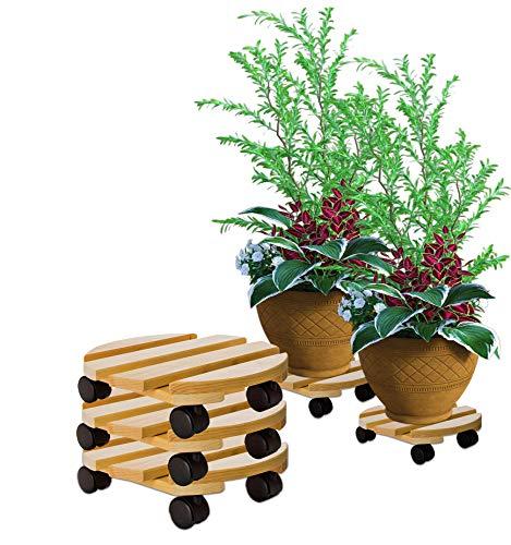 BigDean 3X Pflanzenroller rund Buchenholz massives Holz 30 cm bis 120 Kg Rolluntersetzer