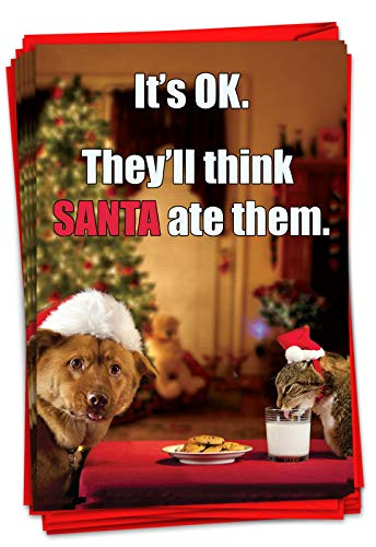 NobleWorks - Box of 12 Dog Christmas Cards Funny - Fun Adorable Pet Dogs, Animal Holiday Greetings with Envelopes (1 Design, 12 Cards) - Think Santa Ate Them B1957