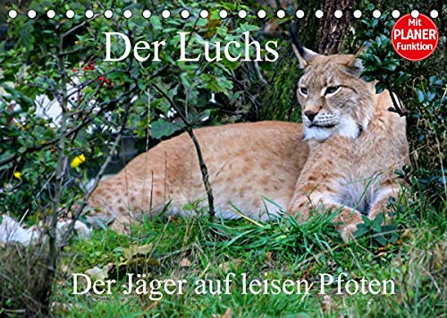 Der Luchs - Der Jäger auf leisen Pfoten (Tischkalender 2022 DIN A5 quer)