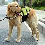 Zoom IMG-2 warrah giubbetto salvagente per cani
