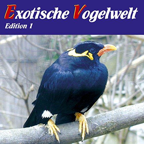 Exotische Vogelwelt Titelbild