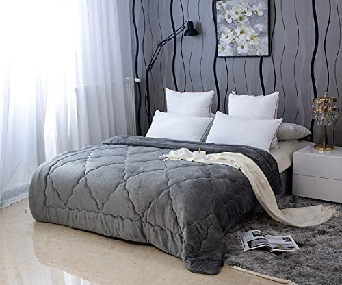 AYSW Duvet Double Comforter Teddy Fleece Flannel Warm and Anti Allergy Lightweight Quilt Duvet Grey