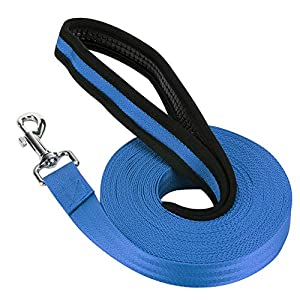 Vivifiantes Laisse de dressage de chien, 10m/9,8m de long en nylon Laisse d'entraînement pour animal domestique suivi d'entraînement Obéissance Laisse