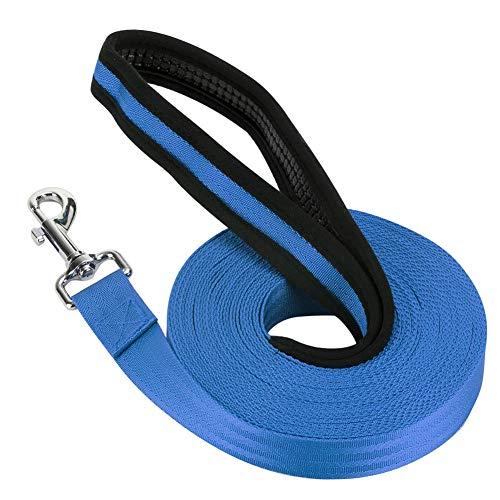 Vivifying Schleppleine für Hunde, 10M Lange Nylon Hunde Trainingsleine mit Handschlaufe zum Ausführen und Trainieren von Gehorsam für Haustiere (Blau)