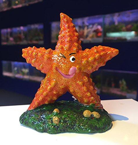 Mezzaluna Gifts Étoile de mer en forme d'étoile de mer orange vif