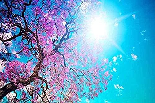 ZYYSYZSH Rompecabezas para Adultos Rompecabezas 1000 Piezas Aprendizaje Educación Juguetes de descompresión Flor de melocotón Sunshine Blue Sky-cartón (38x26cm)