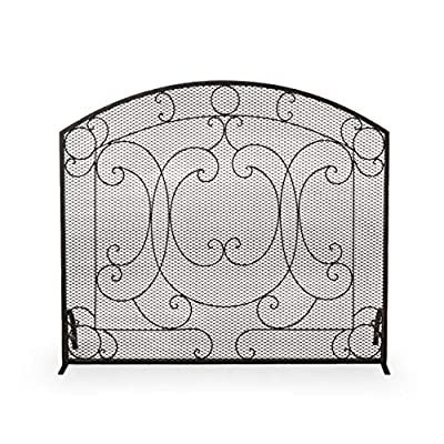 Christopher Knight Home Nydia Iron Fireplace Screen, Black Brushed Gold from Christopher Knight Home