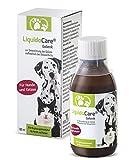 LiquidoCare Gelenk Hund und Katze | Nahrungsergänzungsmittel bei Arthrose, Rheuma und Arthritis | 180 ml