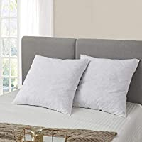 2-Pack Serta Feather Euro Square Pillow