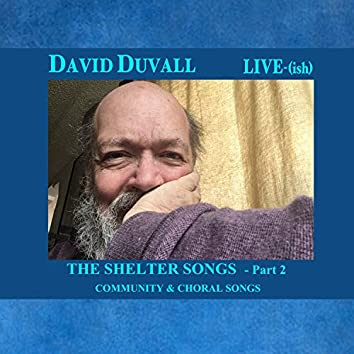 THE SHELTER SONGS LIVE(ish) Part 2 / Community & Choral Songs