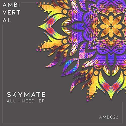 Skymate