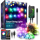 DreamColor Outdoor String Lights, Color Changing Waterproof Christmas Lights with Remote Works with Amazon Echo, App Controlled Music Sync Led String Lights for Indoor Outdoor Decor (16.4 FT)