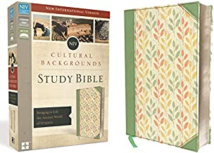 Best asbury bible commentary online Reviews