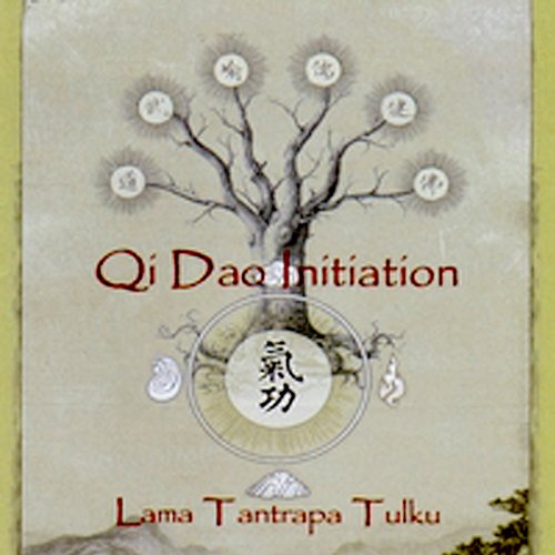 Qi Dao Initiation audiobook cover art