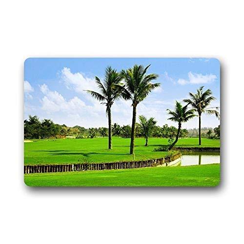 KLing Golfball-Fußmatte, waschbar, für drinnen und draußen, 16 x 24, 40 x 60 cm