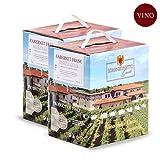 Confezione 2 Bag in Box Cabernet Franc Igt TreVenezie 5 litri – Lorenzonetto Friuli Venezia Giulia