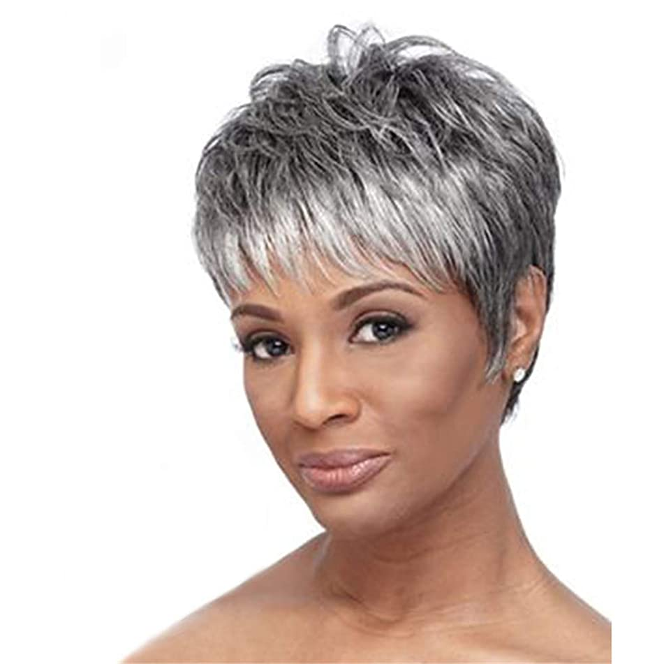 VIWIGS Lady Silver Grey Short Curly Wigs for Women Synthetic Full Hair Natural Wavy Fluffy Cosplay Grandma Costume Wig 8