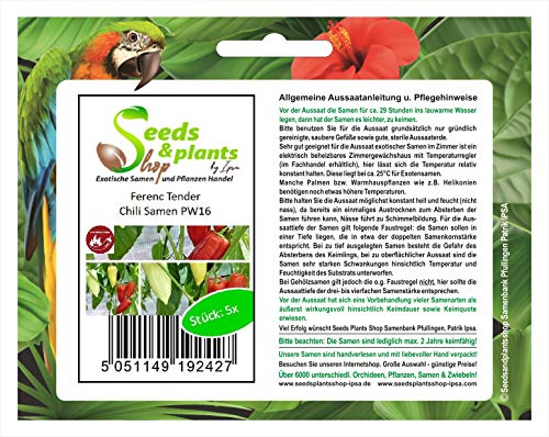 Stk - 5x Ferenc Tender- Samen Saatgut Küche Garten Pflanze Chili samen PW16 - Seeds Plants Shop Samenbank Pfullingen Patrik Ipsa