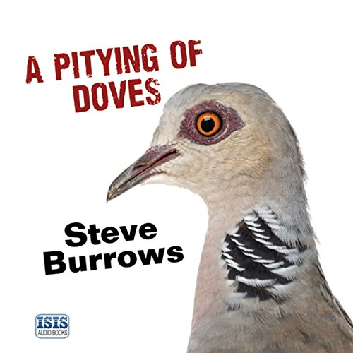 A Pitying of Doves audiobook cover art