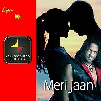 Meri Jaan - Single