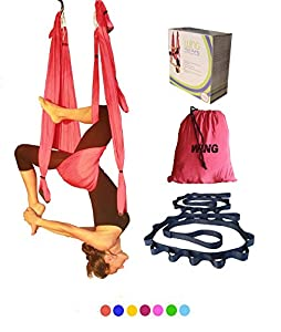 Wing Aerial Yoga Swing Inversion Sling Trapeze