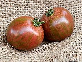 Temura Purple Bumblebee Heirloom Tomato Premium Seed Packet
