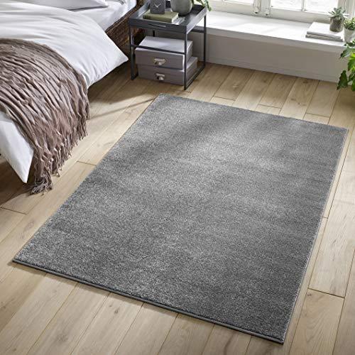 Designer-Teppich Pastell Kollektion | Flauschige Flachflor Teppiche fürs Wohnzimmer, Esszimmer, Schlafzimmer oder Kinderzimmer | Einfarbig, Schadstoffgeprüft (Grau, 140 x 200 cm)