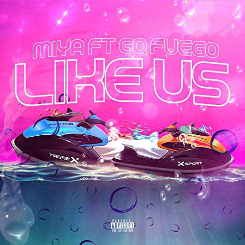 Like Us (feat. GQ Fuego) [Explicit]