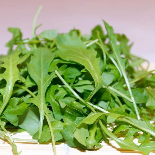Rucola 250 x Samen 100% Natursamen aus Portugal - mehrjährig Naturprodukt… (Rucola)