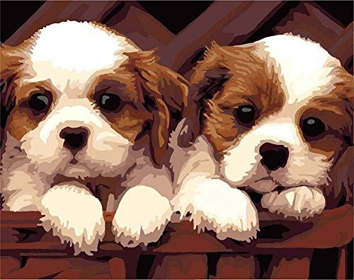 YEESAM ART DIY Peinture Numéro Adulte Enfant - Deux Chiots, Chien Animaux 40x50 cm Peinture par Numero, Paint by Numbers Cadeaux de noël