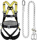 NYZXH Arnés de Escalada Cuerpo Completo, arresto de arresto de caída, Placa de Desgaste de la Cintura, Patas de conexión rápida y Pecho, Espalda y Laterales. (Color : Double Big Hook Set)