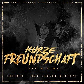 Kurze Freundschaft (feat. Pimf)