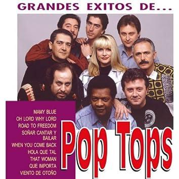 Los Grandes Exitos de Pop Tops