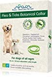 Arava Flea and Tick Collar