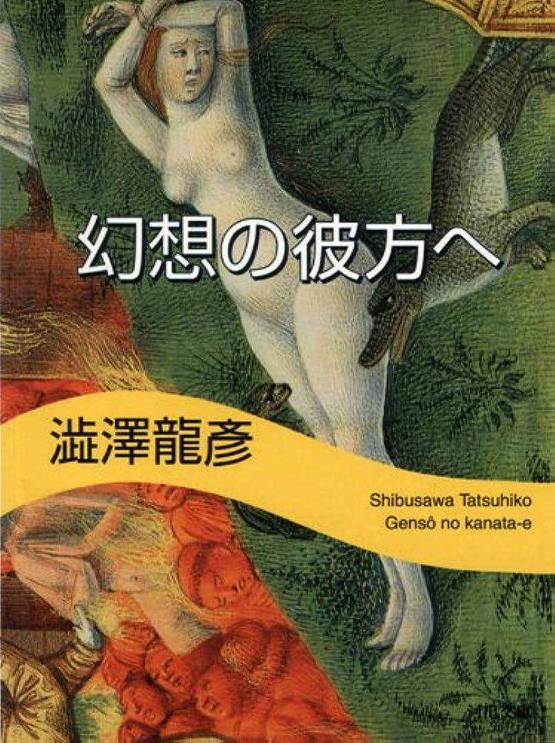 撤回する振幅解明する幻想の彼方へ 澁澤龍彦コレクション (河出文庫)