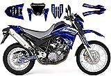 race-styles Pegatinas compatibles con Yamaha XT 660 X (2004-06) Premium Factory Decals KIT
