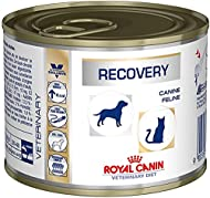 ROYAL CANIN Canine/Feline Recovery Wet Cat/Dog Food - 12 x 1