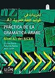PRACTICA DE LA GRAMÁTICA ARABE: Nivel A1 del MCER: 7 (Colección Idiomas)
