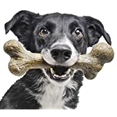 Pet Qwerks Big Foot BarkBone Chew Toy - Tough Durable Nearly Indestructible Bone for Aggressive Power Chewers | Made in USA