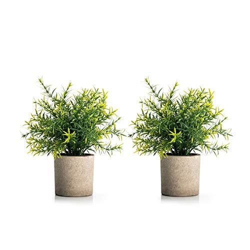 Velener Mini Potted Plastic Fake Green Plant for Home Decor (Set of 2)