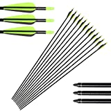 Huntingdoor 31' Archery Fiberglass Target Practice Arrows with Screw-in Tips for Recurve or Compound Bow(Pack of 12) (Green)