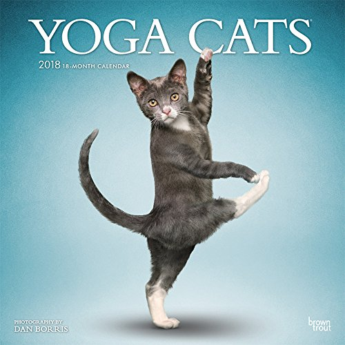 Yoga Cats 2018 12 x 12 Inch Monthly Square Wall Calendar