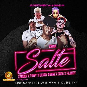 Salte (Remix)