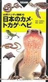 ハンディ10日本のカメ・トカゲ・ヘビ (山溪ハンディ図鑑)