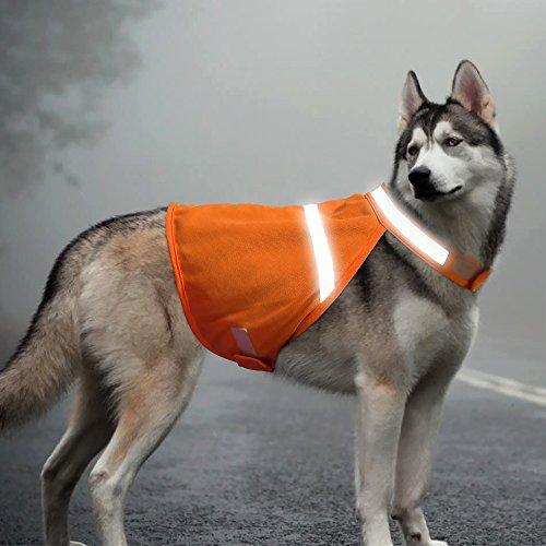Best dog safety vests reflective