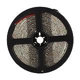 Tiamu Impermeable 5M LED 300 x 3528 SMD 12V 20W IP65 Luz de Tira, Blanco Calido