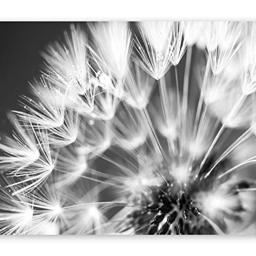murando Fototapete 350x256 cm Vlies Tapeten Wandtapete XXL Moderne Wanddeko Design Wand Dekoration Wohnzimmer Schlafzimmer Büro Flur Blumen Pusteblume b-B-0087-a-d